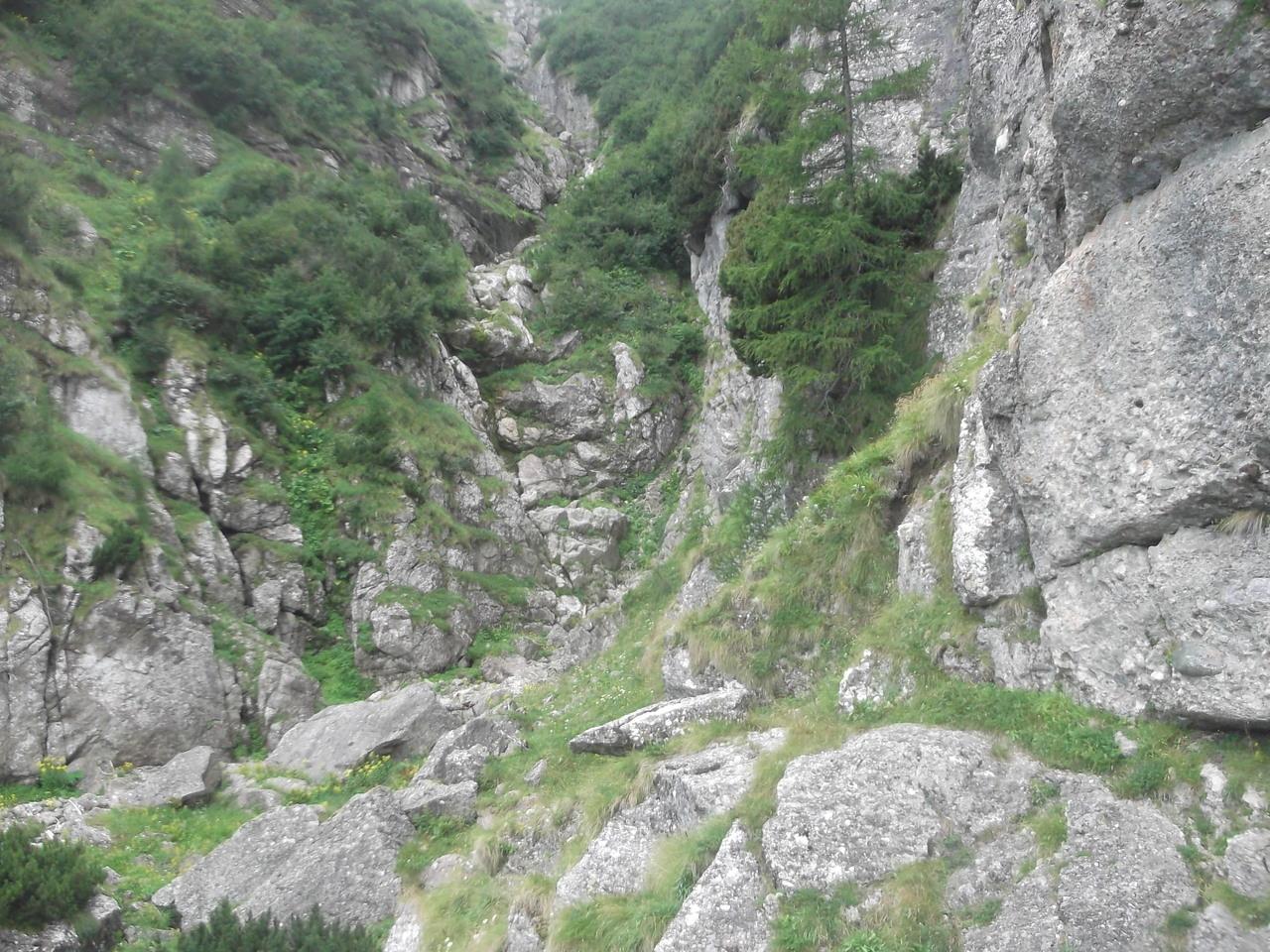 Valea Priponului